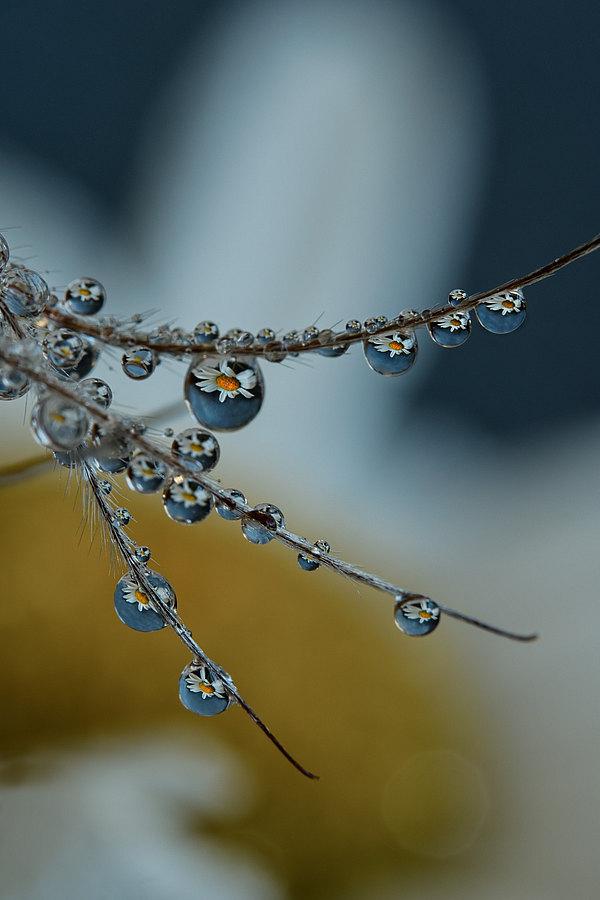 fotografie - Šperková XV