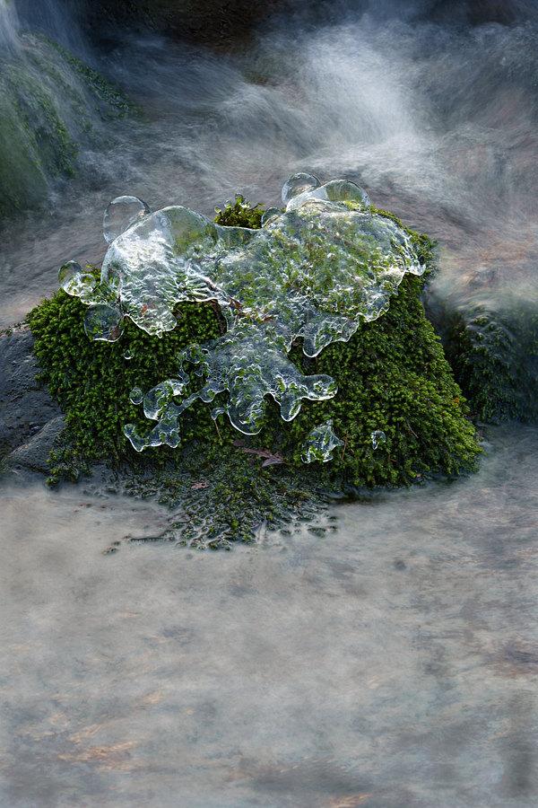 fotografie - Voda výtvarníkem III
