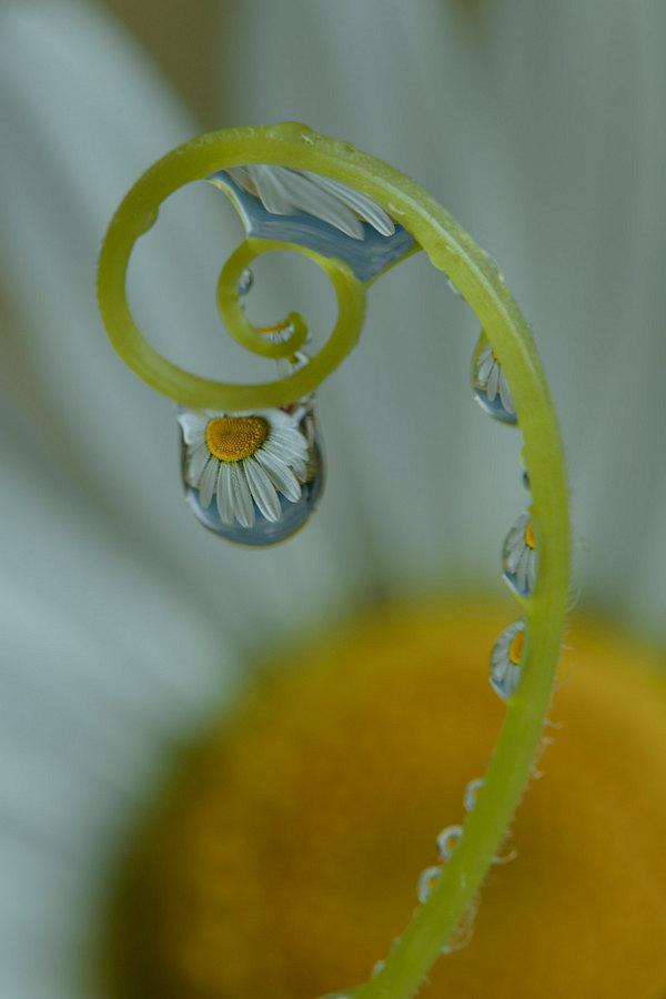 fotografie - Šperková VIII
