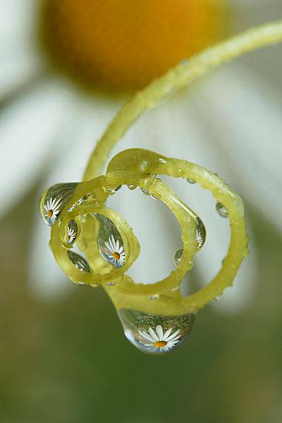 fotografie - Šperková XI