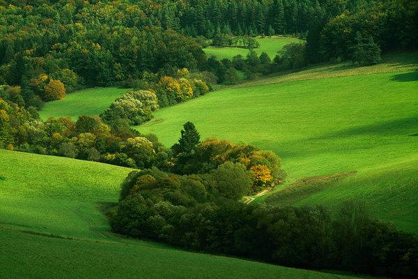 fotografie - Dekorace súľovského údolí