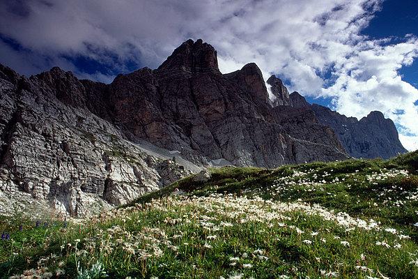 fotografie - Zářijové světlo Dolomit I