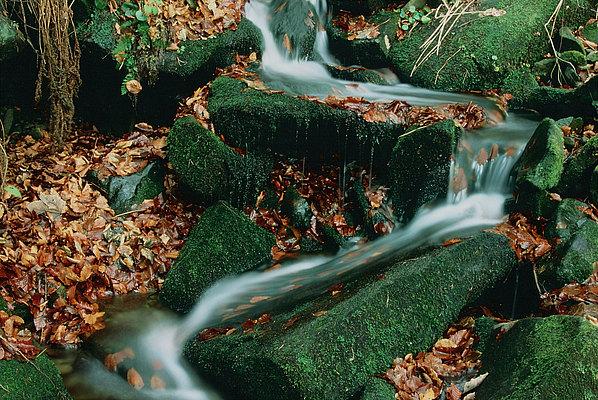 fotografie - Kreace horského potoka