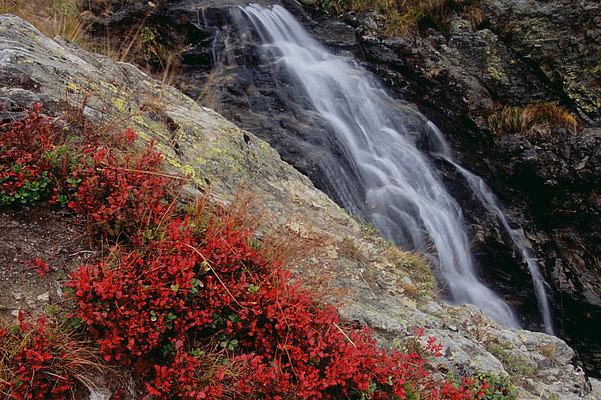 fotografie - Podzimní vodopád I