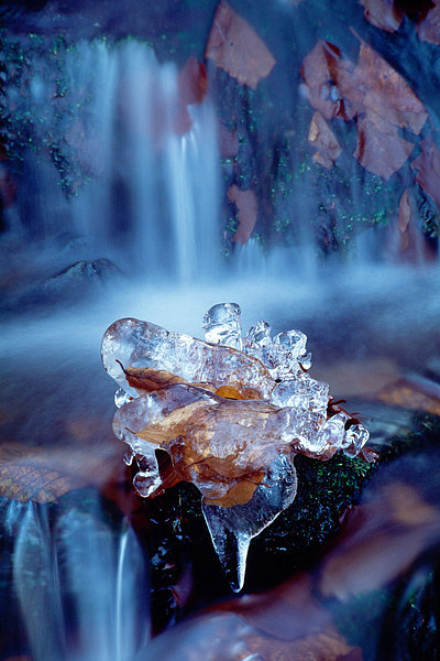 fotografie - Skulptura proudů zimy I