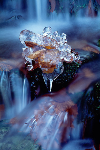fotografie - Skulptura proudů zimy II