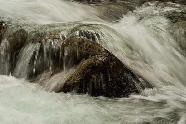 fotografie - Živelné opojení