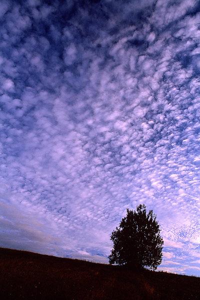 fotografie - Mezi nebem a zemí IV