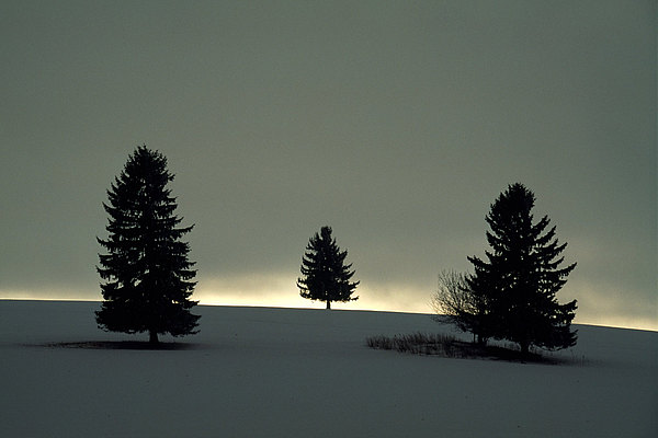 fotografie - Mezi nebem a zemí VII