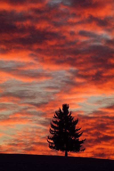 fotografie - Mezi nebem a zemí VIII
