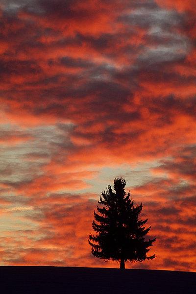 fotografie - Mezi nebem a zemí IX