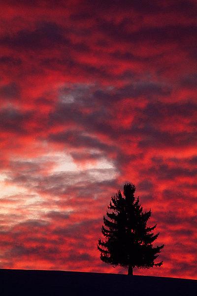 fotografie - Mezi nebem a zemí X