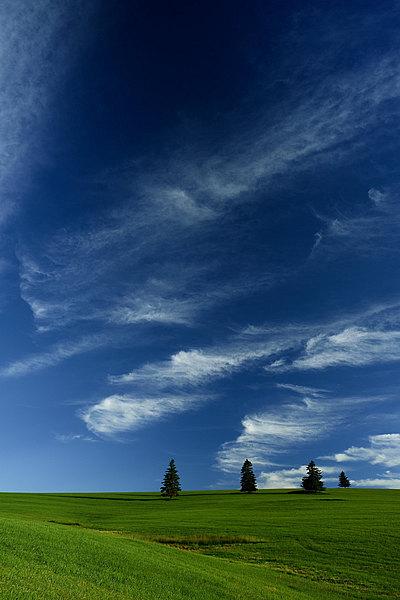 fotografie - Nebeská apoteóza
